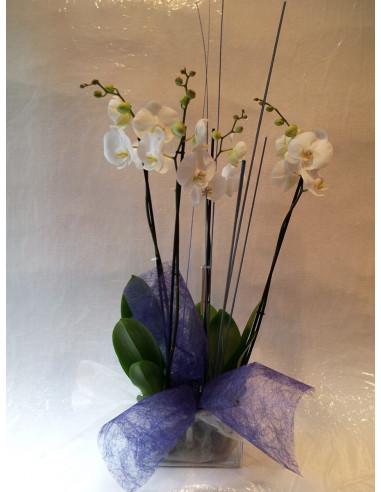 Centro de Orquídeas con base de cristal